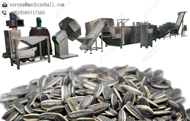 Automatic Sunflower Seed Roasting Line|Roaster Machine for Melon and Pumpkin Seeds