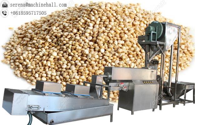 Quinoa Seeds Washing and Drying Machine|Raisin Washer Dryer